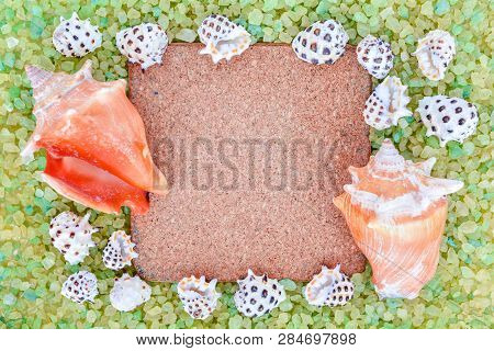 Corkwood Square, Little White And Big Orande Sea Shells On Crystal Sea Salt May Use As Background. A