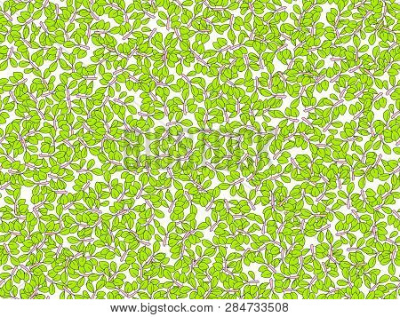 Summer Green Leaves Vector Seamless Pattern. Deciduous Tree Leaf Pattern, Falling Cartoon Leaves On