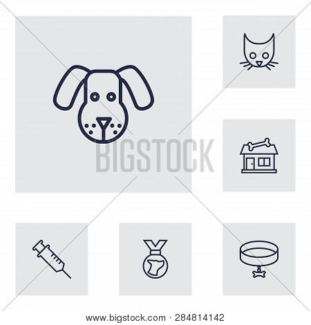 Set Of 6 Mammal Icons Line Style Set. Collection Of Store, Injection, Neckband Elements.