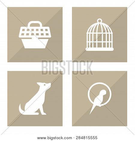 Set Of 4 Pets Icons Set. Collection Of Bird Prison, Carries, Parrot And Other Elements.