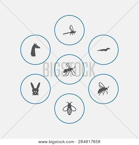 Set Of 7 Zoology Icons Set. Collection Of Bee, Wisp, Mosquito And Other Elements.