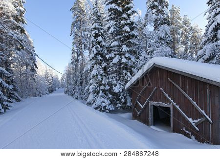 Old Wooden Barn By The Side Of A Cross-country Tracks. Snowy Trees Both Sides. Bright Sunshine On A