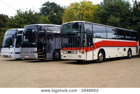 Buses In Car Park/ Parking Area.