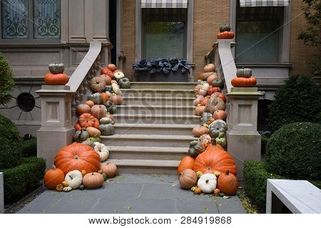 multiple, numerous orange pumpkins or gourds decorate adorn the side of the front steps leading up to a house for the fall, Halloween poster