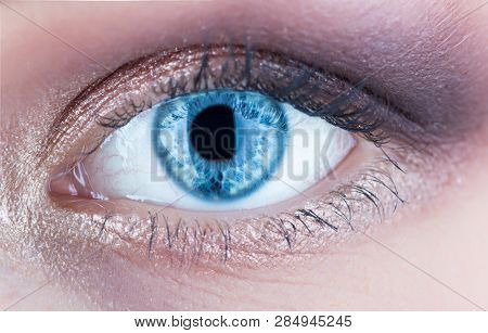 Macro Of Human Eye. Closeup Of Blue Human Eye. Human Eyes Close-up Detail. Female Eyes With Long Eye