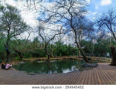 Dan, Israel - February 12, 2019: The Wading Pool In Tel Dan Nature Reserve, With Visitors, Northern