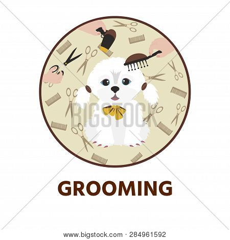 Cute Dog  At Groomer Salon. Pet Grooming Concept.  Vector Illustration For Pet Hair Salon, Styling A