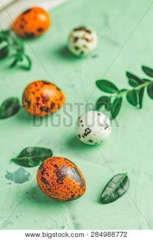 Easter Greeting Card With Colored Yellow Orange Quail Eggs And Green Branches Over Green Concrete Su