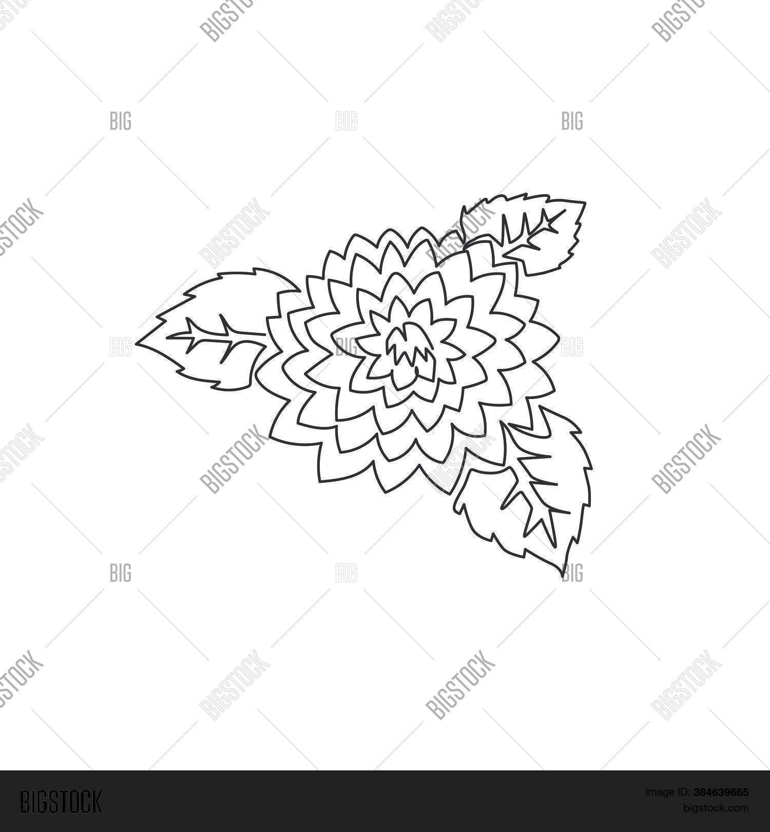One Single Line Vector Photo Free Trial Bigstock