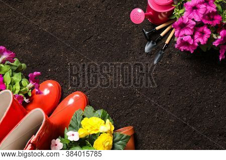 Flat Lay Composition With Gardening Tools And Flowers On Soil, Space For Text