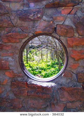 Round Window Of Nature