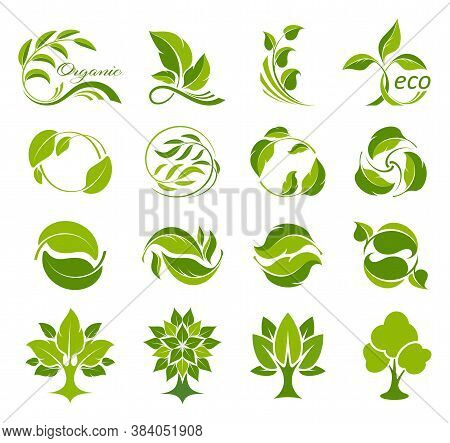 Leaves And Trees Icons Set. Collection Of Symbols For Fresh And Ecological Products. Bio, Organic An
