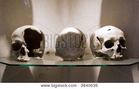 Dead Skulls