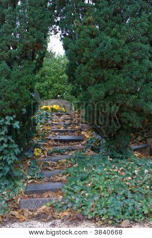 Grave Hammock