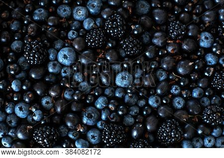 Mix Set Layout Of Different Types Of Black Berries On A Black Table. Stylish Seasonal Vitamins