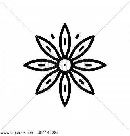 Black Line Icon For Star-anise Star Anise Anise-tree Illicium-verum Illicium Brown Condiment Spice F