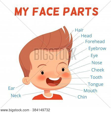 Child Learning Poster. Parts Of The Boys Face With Signed Names. Examining Body Parts