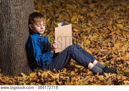 Boy In Autumn Forest With Book. Child Fell Asleep In Woods With Book In Hand.