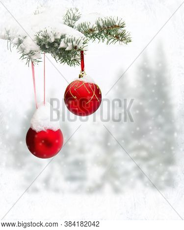 Sprig Of Christmas Tree (spruce) With Of Hanging Balls In Snow In Of Winter Fir Forest During Snowfa