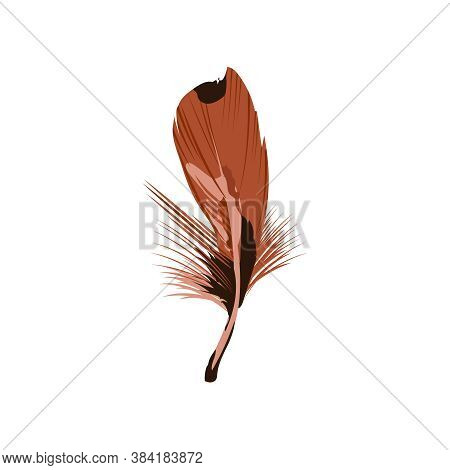 Feather Of Prey Bird. Beautiful Detailed Brown Feather Of Bird Vector Illustration Isolated On White