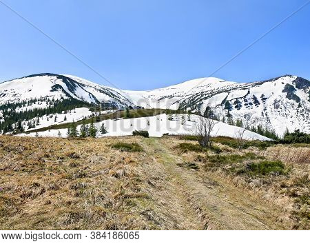 Spring Landscape Of Mountains With Hills Covered Of Snow, Glade, Of Fir Forest And Blue Sky. Carpath
