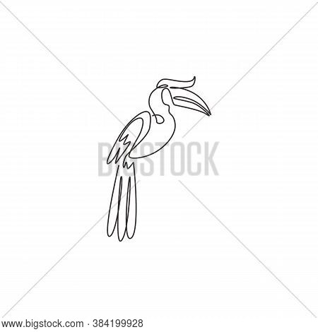One Continuous Line Drawing Of Cute Great Hornbill For Company Logo Identity. Large Beak Bird Mascot