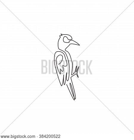 One Continuous Line Drawing Of Cute Woodpecker On Tree. Beak Drummer Bird Mascot Concept For Nationa