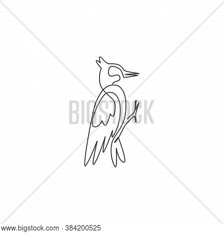 Single Continuous Line Drawing Of Beauty Woodpecker For Company Logo Identity. Little Cute Bird Masc