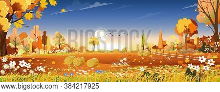 Vector Autumn Landscape At Harvest Farm Field With Orange And Blue Sky,beautiful Sunset In Mid Autum