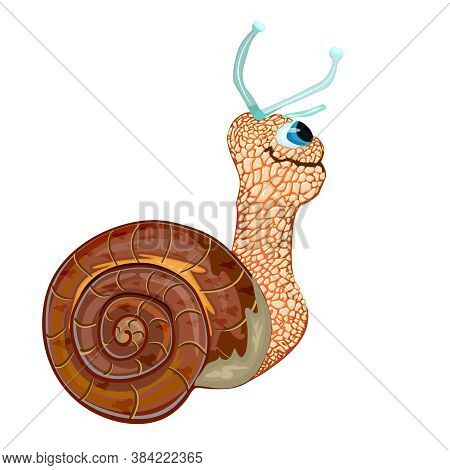 Snail Isolated On White Background. Happy Cute Character Cartoon Snail With His Home Shell Body. Che