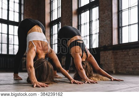 Two Young Women Do Complex Of Stretching Yoga Asanas In Loft Style Class. Adho Mukha Svanasana - Dow