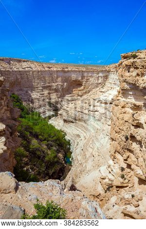 Picturesque ancient oasis. The magnificent gorge Ein Avdat is the most beautiful in the Negev desert. Israel. The concept of environmental and photo tourism. Bird's eye view
