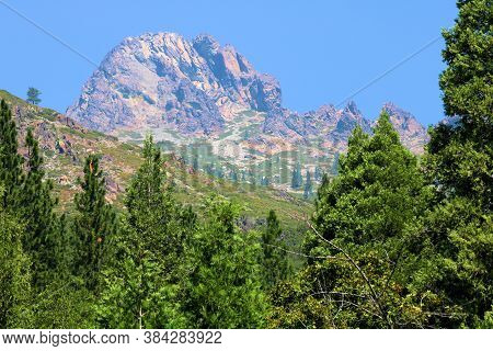 Lush Alpine Forest With A Rocky Crag Beyond Taken At The Sierra Buttes In The Northern Sierra Nevada