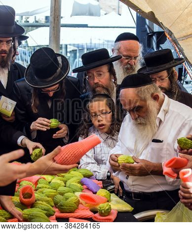 JERUSALEM, ISRAEL - SEPTEMBER 20, 2018: Religious Jews choose etrog - the fruit of  magnificent tree Traditional fair of ritual plants on the eve of Sukkot. The concept of religious and photo tourism
