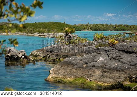 Beautiful View Of Transparent Waters Of Turquoise Blue Caribbean Lagoon Yal-ku Located In Quintana R
