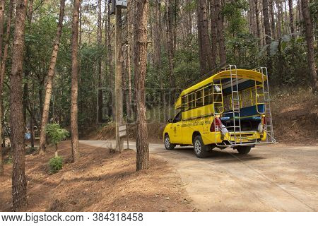 Thai People Driving Pick Up Car On The Road Inside Pine Forest For Bring Travelers Travel Visit In P