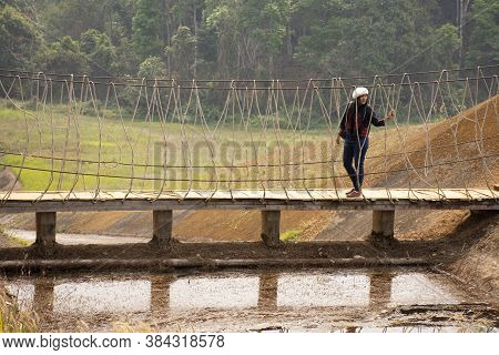 Travelers Thai Women Visit Walking On Wooden Suspension Bridge In Pang Ung Lake In Pang Oung Forest