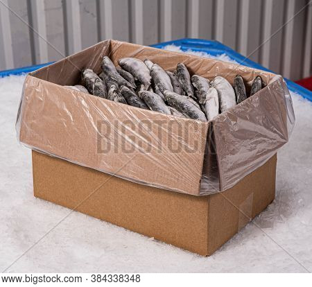 A Cardboard Box With A Plastic Bag On The Ice Full Of Fish. The Production Of Sardines. Fish Market.