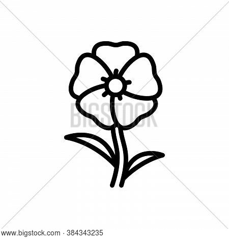 Black Line Icon For Hollyhock Althaea Malvaceae Alcea-rosea Blooming Natural Flower Botanical