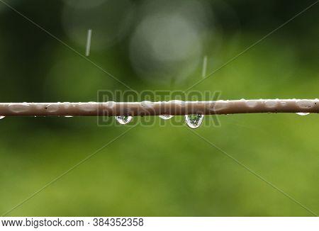 Rainy Day Water Drop Stock Photo Wallpaper