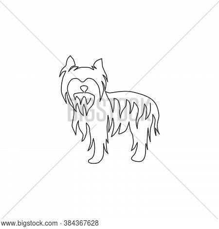 Single Continuous Line Drawing Of Adorable Yorkshire Terrier Dog For Company Logo Identity. Purebred
