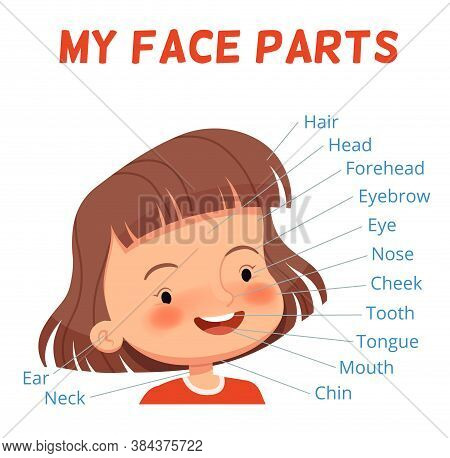 Child Learning Poster. Parts Of The Girls Face With Signed Names. Examining Body Parts