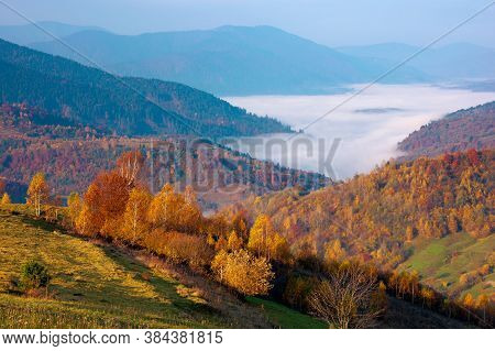 Autumn Sunrise In Mountains. Countryside Landscape In Fall Season. Fog In The Distant Valley. Sunny