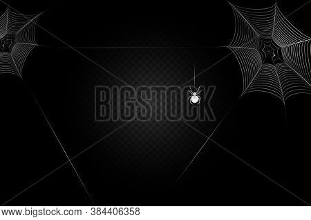A Black Spider Hangs On A Web. Scary Spiderweb Of Halloween Symbol.
