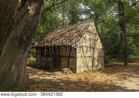 Wooden Hut Hidden In The Forest, Daytime Landscape Image