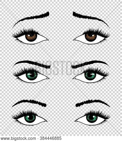 Collection Of Vector Eyes. Hand Drawn Female Luxury Eye With Perfectly Shaped Eyebrows And Full Eyel
