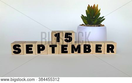 15 September .september 15 On Wooden Cubes On A White Background.pot With A Flower .calendar For Sep