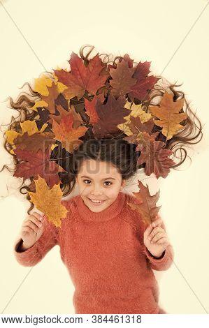 Deep Conditioning Treatment. Fall Season. Shampoo Care. Fall Is Here. Organic Mask. Haircare Tips Ad