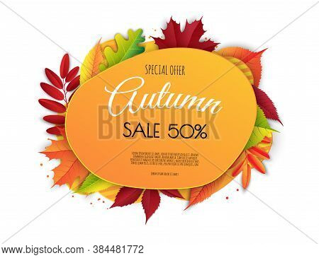 Autumn Sale Background Layout Decorate With Leaves For Shopping Sale. Frame Leaflet Or Web Banner. V