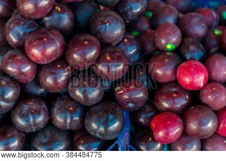 Farm Fresh Juicy Summer Plums. Fresh Ripe Plums Placed On Table In Market. Organic Red Plums Fruit I